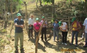 Día de Campo Proyecto Manejo  de Pastos y Forraje